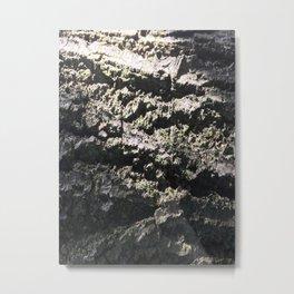 Shedding Light Metal Print