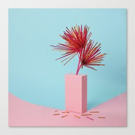 Still life with straw flowers Canvas Print