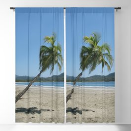 Palm Tree at the Beach Blackout Curtain
