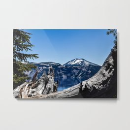 Downed Tree at Crater Lake - Oregon Metal Print