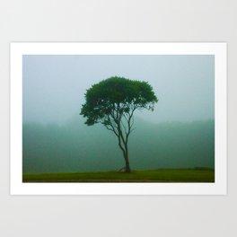 Fog Tree Art Print