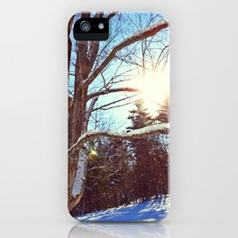 Sunny Winter Tree iPhone Case