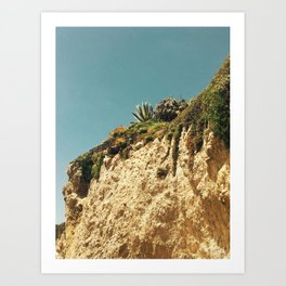 Desert Shrubs Art Print