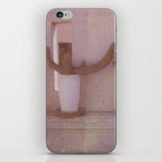 Moroccan Cactus iPhone & iPod Skin