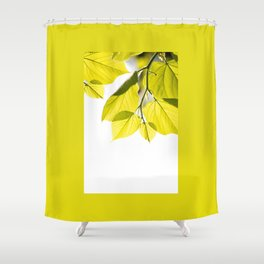 Twig with young green leaves on white Shower Curtain