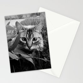 CuCù gattone Stationery Cards