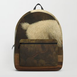 George Stubbs - White Poodle in a Punt Backpack