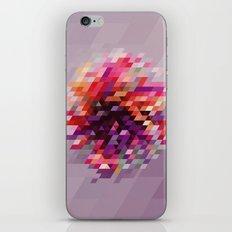 Cluster bir iPhone & iPod Skin