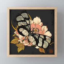 Glasswing Butterfly Framed Mini Art Print