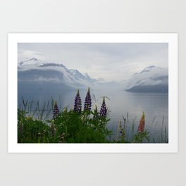 Lupine flowers with mountains landscape Art Print