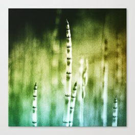 Painting Texture Canvas Print