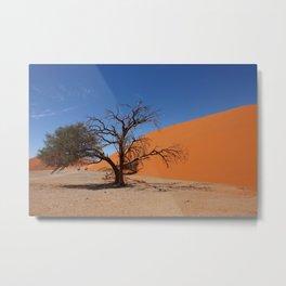 NAMIBIA ... Namib Desert Tree III Metal Print