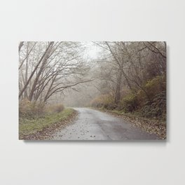 Empty California Road Metal Print