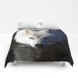Quenched Comforters