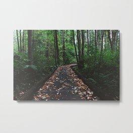 Forest Trail XLIII Metal Print