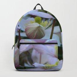 Clemantis Montana I2 Backpack