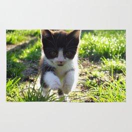 A Tuxedo Kitten Named Seven Rug