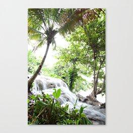 Fronds & Falls Canvas Print