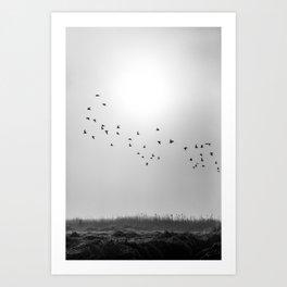 Flock Art Print