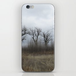 Wildlife Refuge in North Platte, NE iPhone Skin