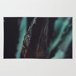 Aloe plant close-up Rug