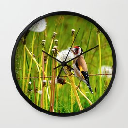 Europan goldfinch in late Spring Wall Clock