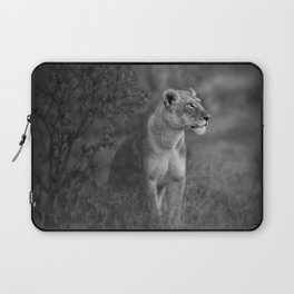 Lioness Portrait Laptop Sleeve