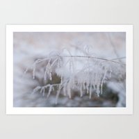 Heavy frosted  Art Print