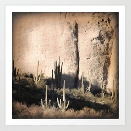 """Cactus Shadow"" by Murray Bolesta! Art Print"