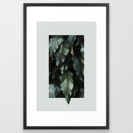 Growth II Framed Art Print