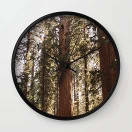 Sequoia National Park XIV Wall Clock