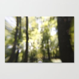 Embrace The Blur Canvas Print
