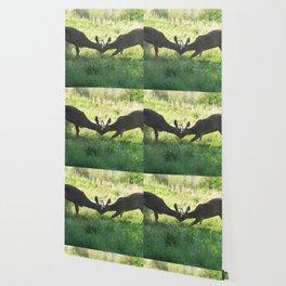 Brother Deer Wallpaper