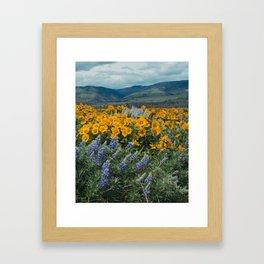 Oregon Spring Wildflower Hillside Framed Art Print
