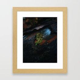 A Day After Autumn Rain Framed Art Print