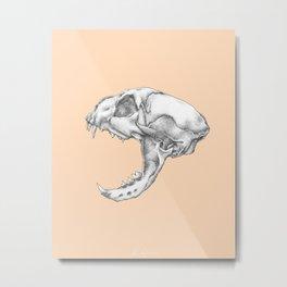 Peachy Cat Metal Print