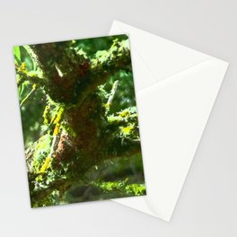tree interest Stationery Cards