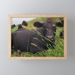 Another day in the pasture Framed Mini Art Print