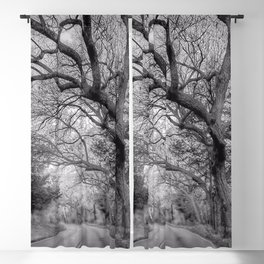 Hairy Man Road - Brushy Creek- Round Rock, Texas - Black and White Blackout Curtain