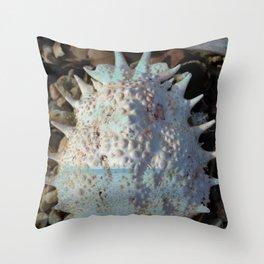 The Sea Inside Throw Pillow
