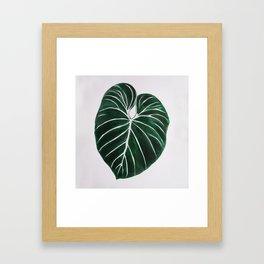 GREEN LEAF 2 Framed Art Print