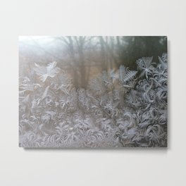 Frost in the morning Metal Print