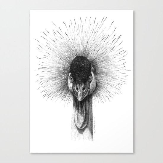 Black Crowned Crane G2012-065 Canvas Print