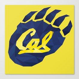 Cal bear Canvas Print