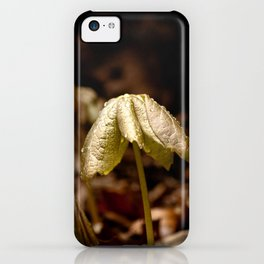 Natures Little Umbrella  iPhone Case