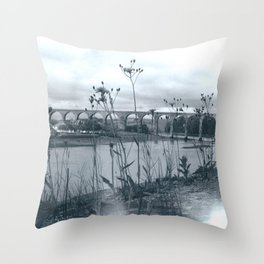 Flowers in the Wall, Berwick Throw Pillow