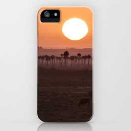 Sunset in the palm trees iPhone Case