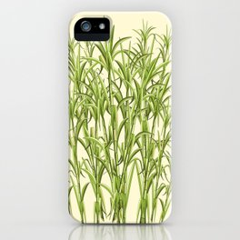 Sugar Cane Exotic Plant Pattern iPhone Case