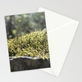 Moss Under Battle Creek Falls Stationery Cards
