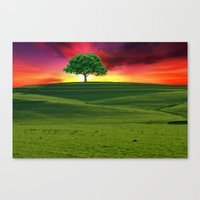 one tree hill Canvas Prints featuring One Tree Hill by gypsykissphotography